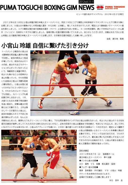 ニュースレターVol.11-1決定案.jpg